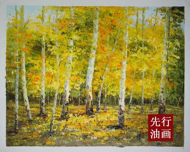 白桦林 风景 装饰画图片